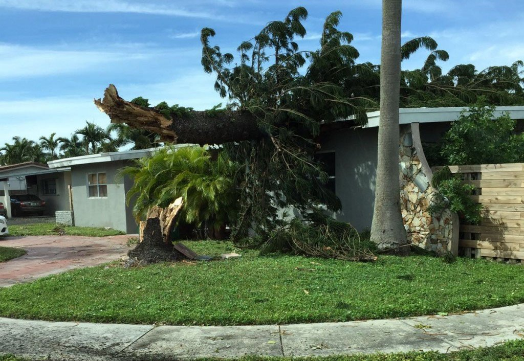 Can a Hurricane Claim Public Adjuster Help Me?