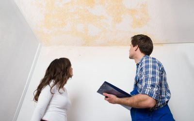 Experienced and Professional Public Adjusters in Dade County