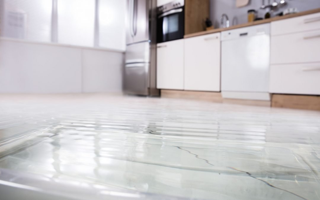I have water damage in my home. Can a Public Adjuster in Hollywood help me?