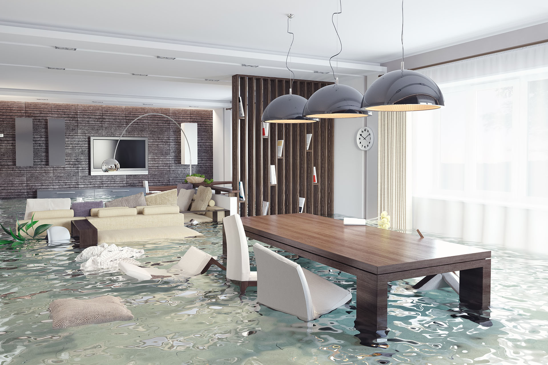 Are You Experiencing Water Damage in Hollywood, FL?